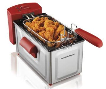2 Liter Professional Deep Fryer on sale for $20 (normally $50)