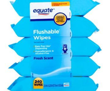 10 Pack of Flushable Wipes for only $12