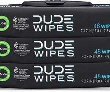 3 Pack of Flushable Dude Wipes on sale for $9.83 shipped (normally $13)